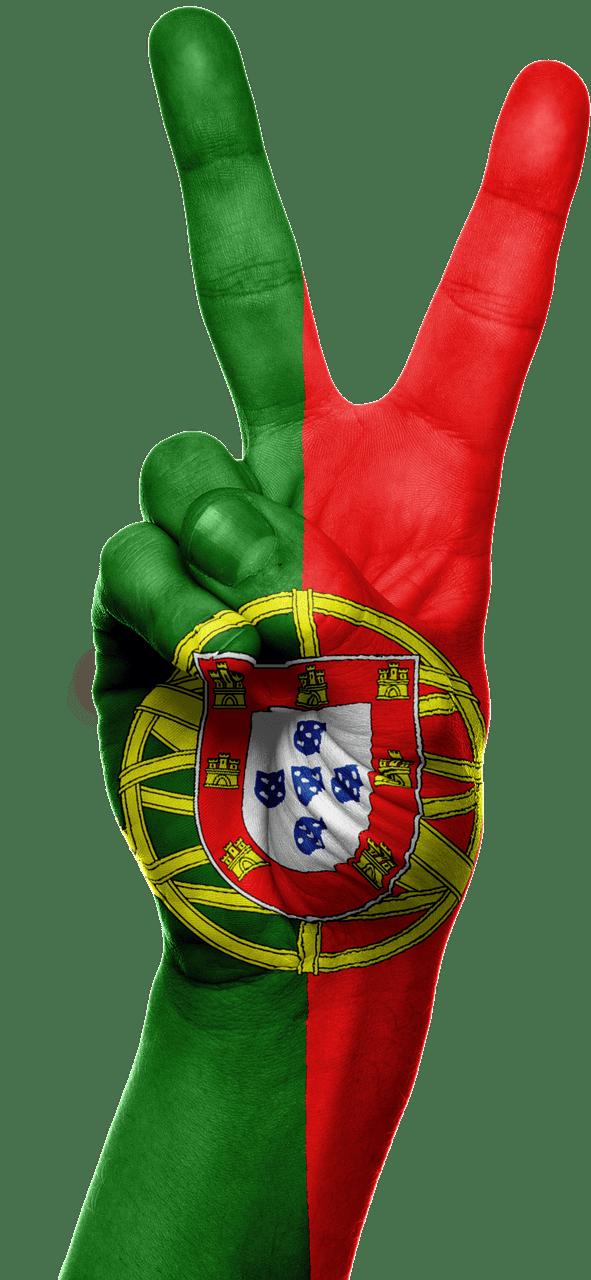 יד צבוע בדגל